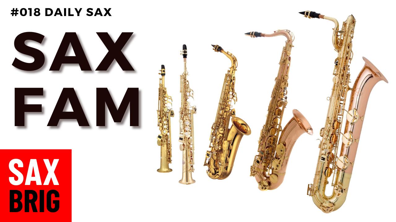 Saxophon Familie