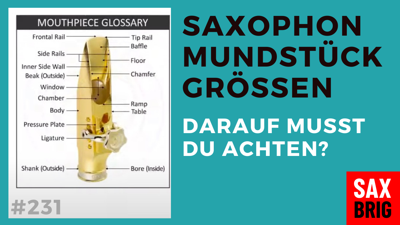 Mundstück Saxophon Aufbau